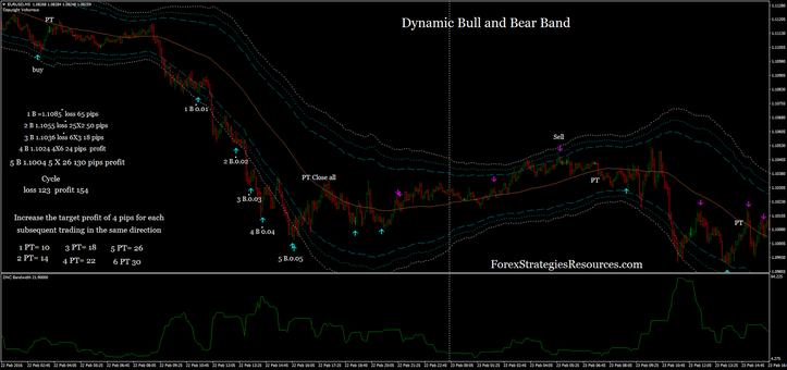 Dynamic Bull and Undergo Band