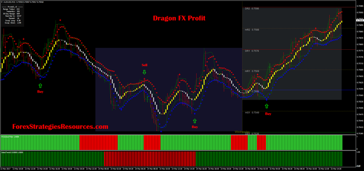 Dragon FX Earnings