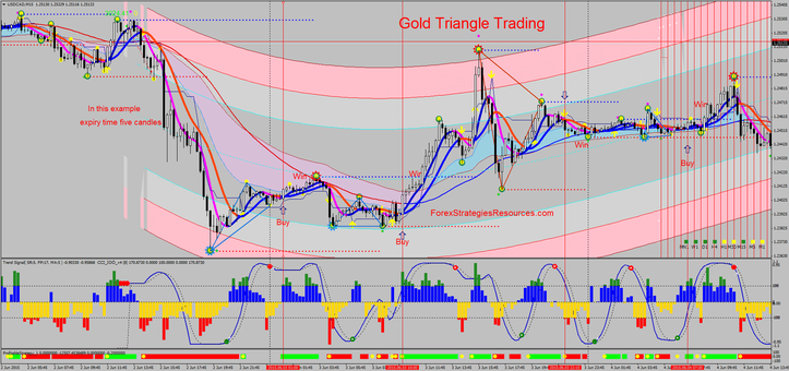 Golden Triangle Trading