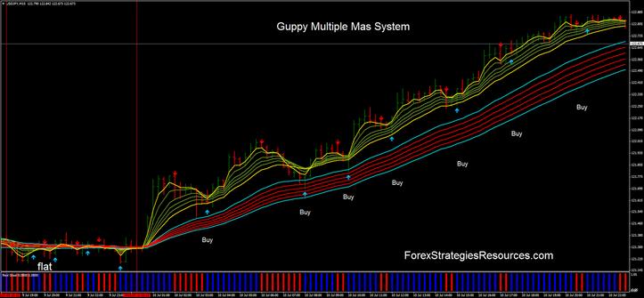 Guppy Varied Mas Process